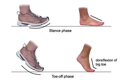 foot walking copy