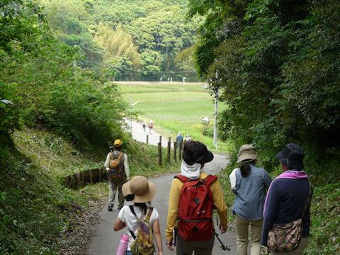 ⑤-1松崎の斜面林縁の道