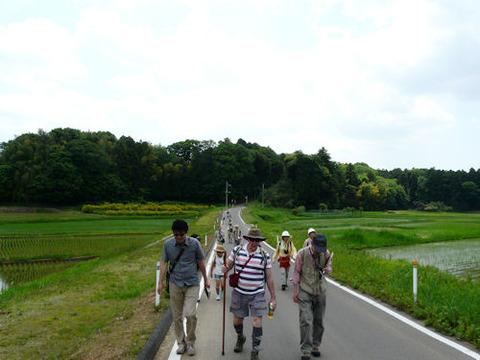 ⑤-2松崎の斜面林縁の道