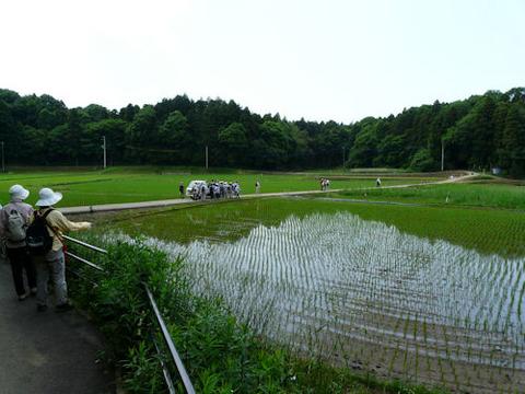 ③-2西根の谷津田
