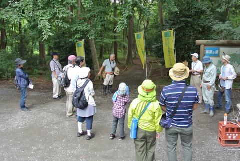 2015-07-18_003_RCN森の樹木
