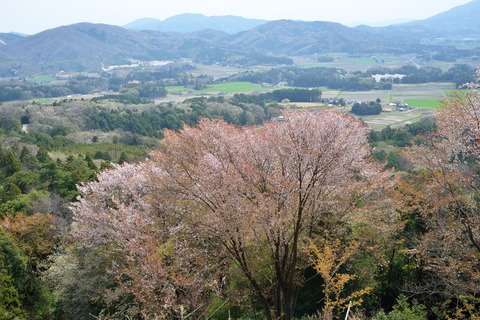 2017-04-15_074_桜川市_平沢林道第一展望台より