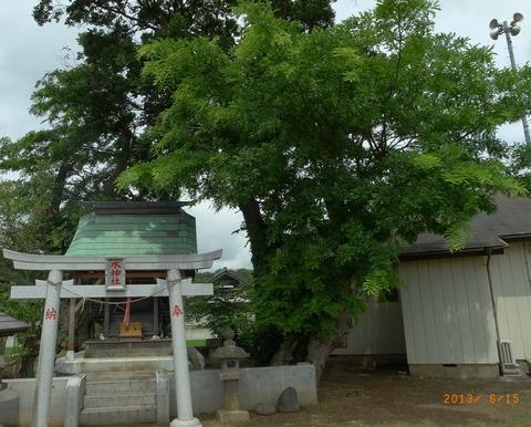 20130615サイカチ印西 (4)
