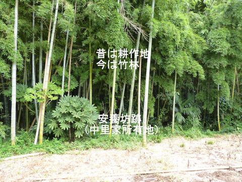 130824安養坊(結縁寺)中里光男所有地 文字