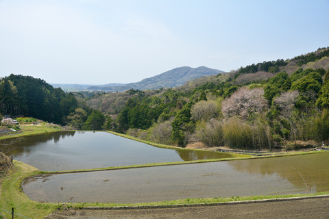 2017-04-15_103_桜川市平沢_棚田のある里山風景