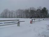 雪の中でも運動
