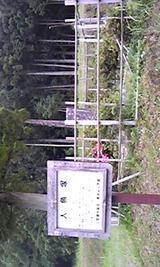 df9a95eb.jpg
