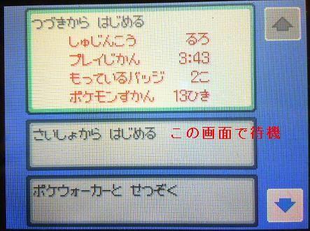 HGSS固定3