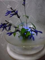 ブル−の花