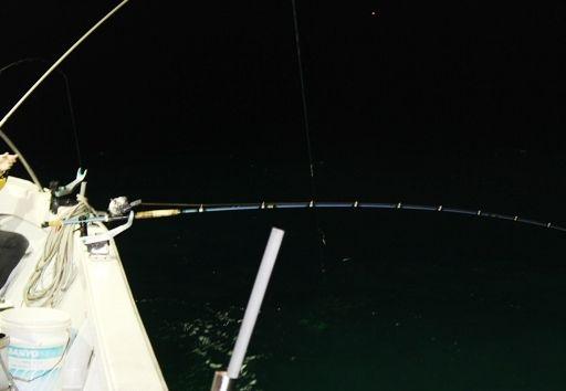 楽しそうな釣り人たちと釣果の思い出。
