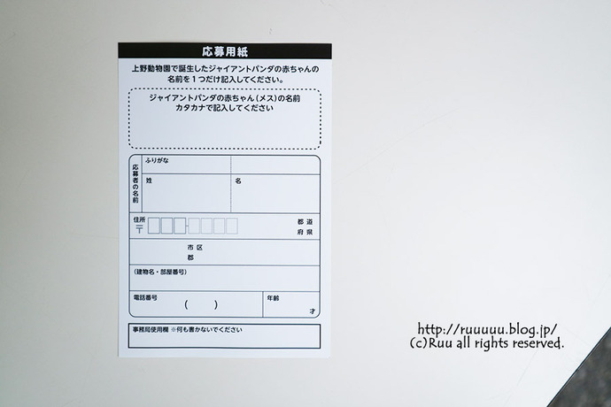 IMG_0452-1