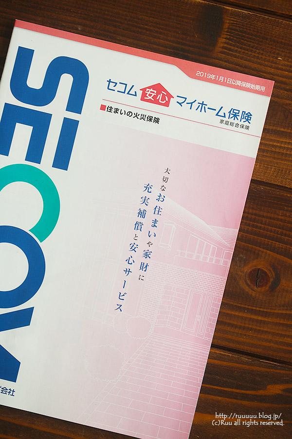 IMG_0010-1