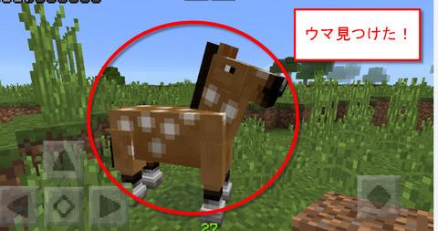 馬見つけた