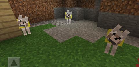 黄色のオオカミたち