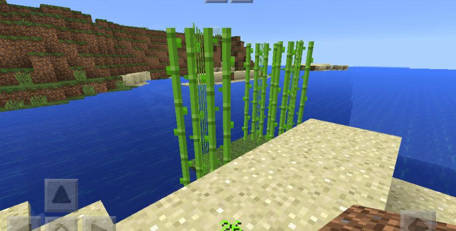 マイン クラフト サトウキビ 栽培