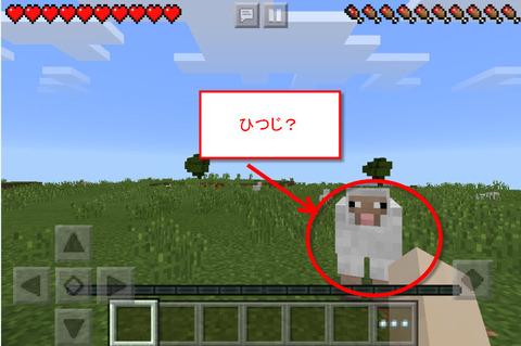 マイクラ羊?