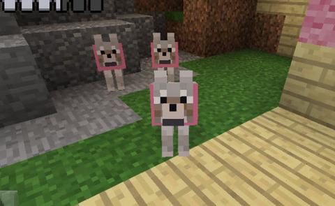 ピンク色のオオカミたち