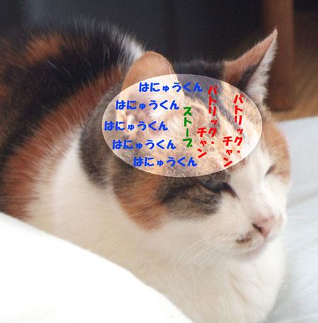 2014_0214ハナちゃんの脳内メーカー