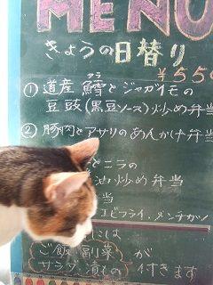 2015_1022_日替り