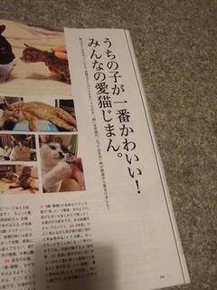 みんなの愛猫じまんのページ
