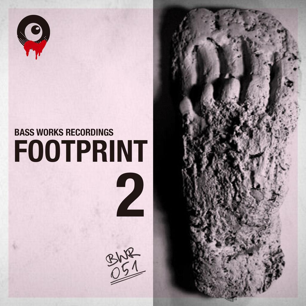 BWR05_footprint2