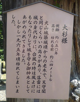 inuyama10