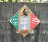 sakamotohaka1