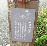kagami3