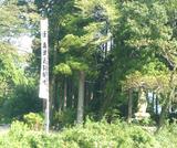 sekigaharata4