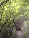 また階段だ.jpg