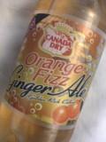オレンジジンジャー