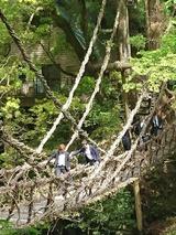 5月15日祖谷のかずら橋9