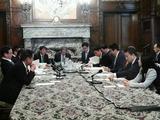 4月10日新たな国立公文書館及び憲政記念館に関する小委員会2
