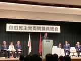 3月17日党大会に代わる両院議員総会2