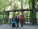 5月15日祖谷のかずら橋