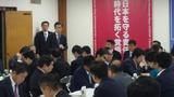 11月27日経済成長戦略・政調全体会議