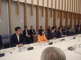 6月11日国家戦略特区諮問会議