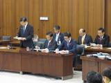 国交委員会2