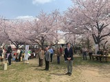 4月7日蕨市郷町会・桜まつり2