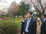 "4月13日国交省管理の""国営昭和記念公園""の視察"