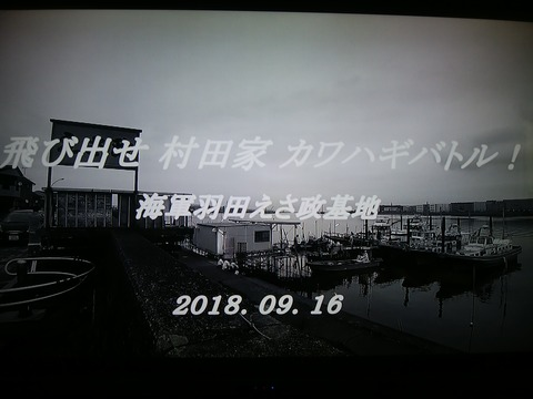 IMG_20181003_152525