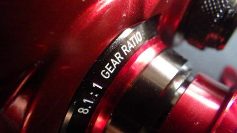 RIMG6558