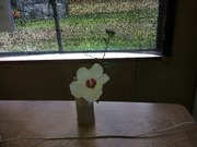 6−竹筒花瓶に活けたムクゲ(槿)