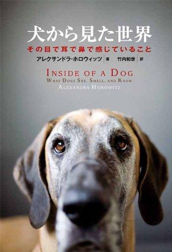犬から見た世界