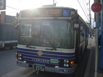 NS-198