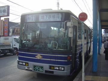 N-309