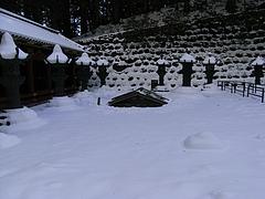 雪に埋もれてます。