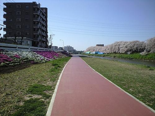 4月12日北越谷元荒川4
