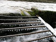 2010東照宮の氷柱