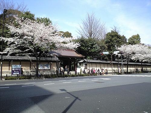 4月7日靖国神社